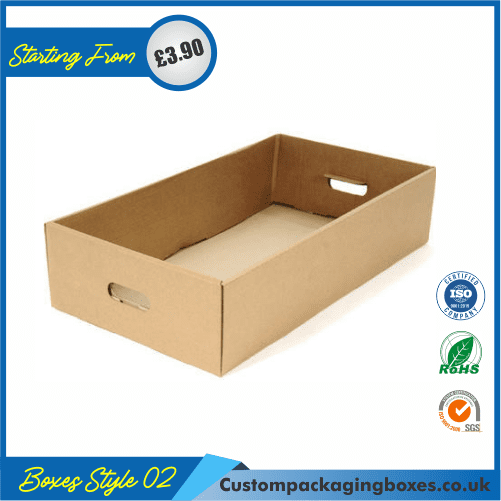 Cardboard tray 02