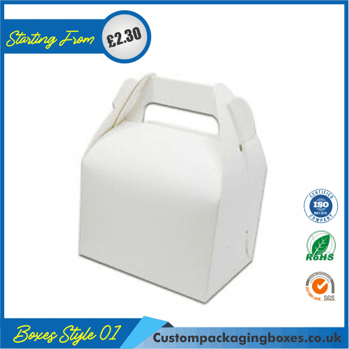 Carrying case box with handle 01