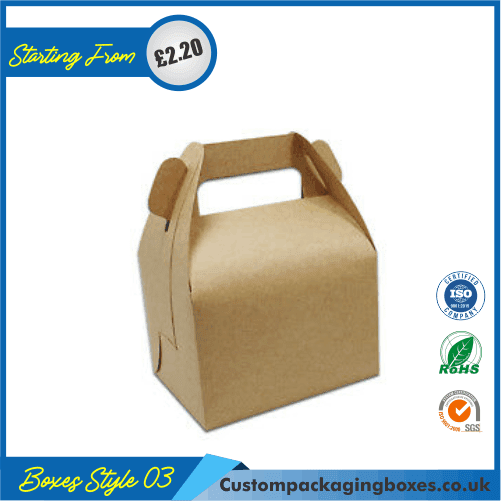 Carrying case box with handle 03