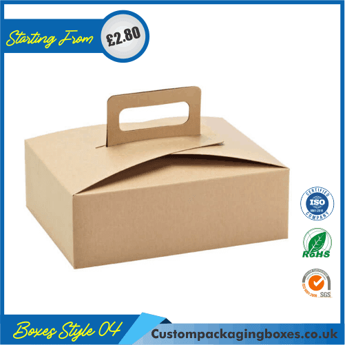 Carrying case box with handle 04