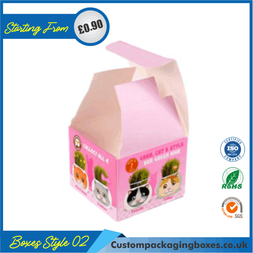 Cardboard Display Boxes 02