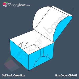 09-Self-Lock-Cake-Box